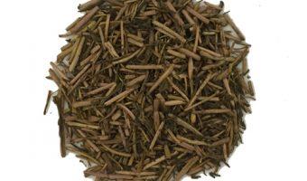 Hojicha - Japanese Tea